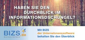 10. Februar 2017 – Handwerks-Aktionstag für BIZS Interessenten